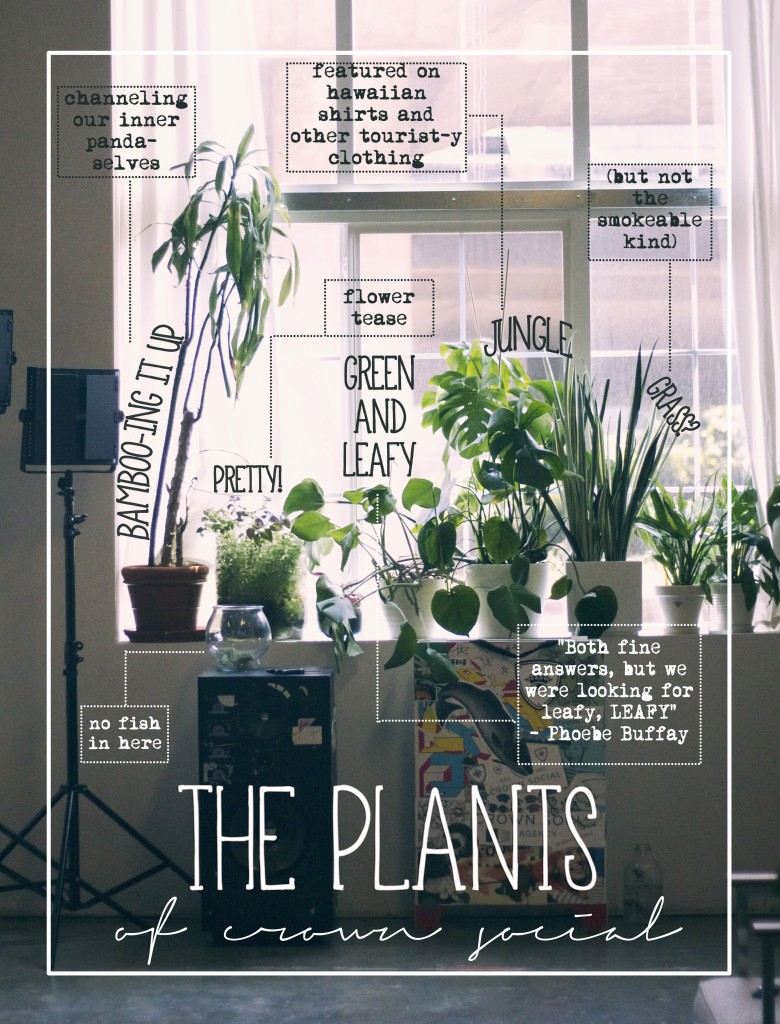 The Plants of Crown Social